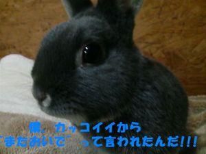 Leon4