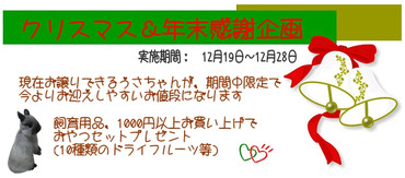 Navidad2_5